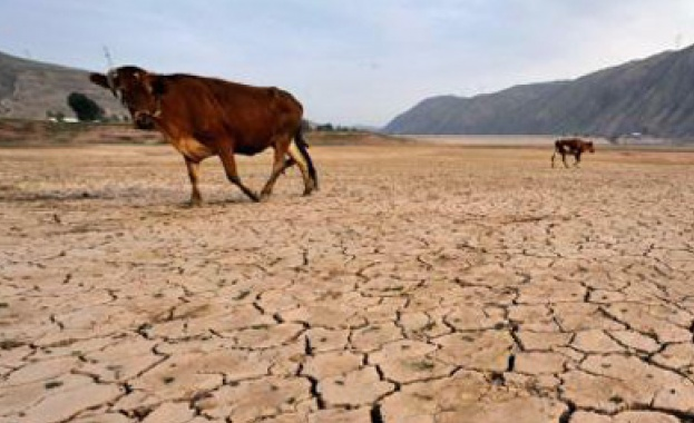 В Бразилия започна Световният форум за водата. ООН и голям