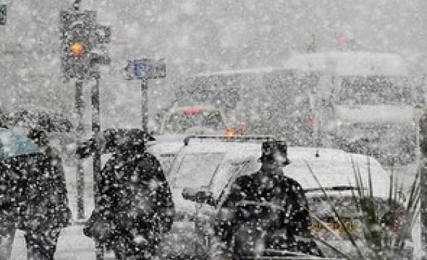 Обилен снеговалеж парализира Австрия и Германия