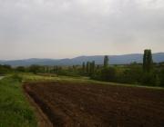 България може да загуби 220 млн. лв. по Агроекологичната мярка от новата Програма за селските райони