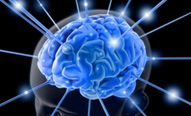 Снимка: Съзнанието ни помага да се адаптираме към променящия се свят