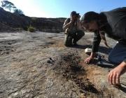 Работилница за керамика разкриха археолозите в Козарева могила