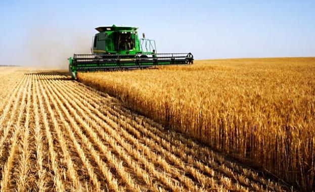 40% от работещите в земеделието в България са жени