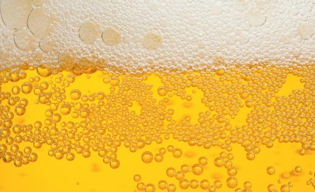 Откриха най-древната бира в света