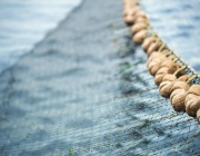 Рибари отново излизат на протест срещу политиката на държавата в сектора