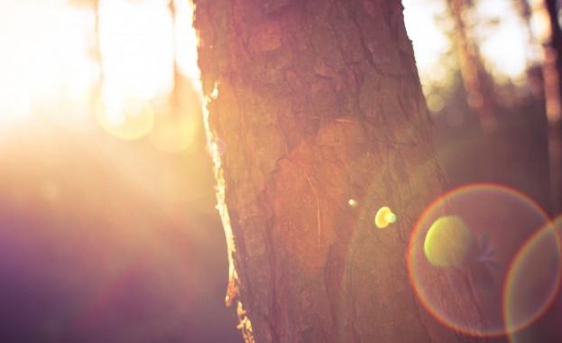 Щастието няма дълги ръце. То прегръща оня, който се доближи