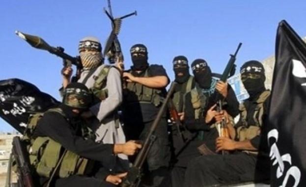 Иракски военен обяви, че терористите от ДАЕШ (