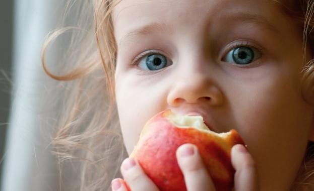 Един от най-ценните сред плодовете е ябълката. Още от детска