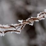 Сняг и леден дъжд затрудняват движението в Румъния