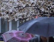 Дъждът продължава на запад, температурите слабо ще се понижат