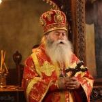 Митрополит Гавриил: Всеправославен събор трябва да реши въпроса за Украинската църква
