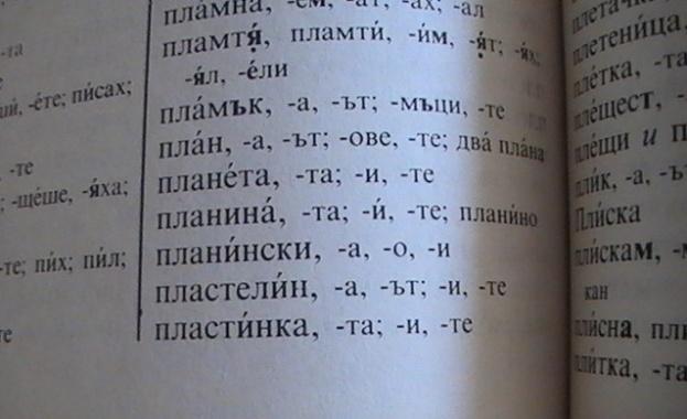 По 215 нови думи в българския език на година