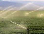 """МЗХ отрече информацията за подготвяна приватизация на """"Напоителни системи"""""""
