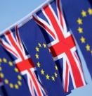 Резултатът от референдума - протестен вот без ясна програма