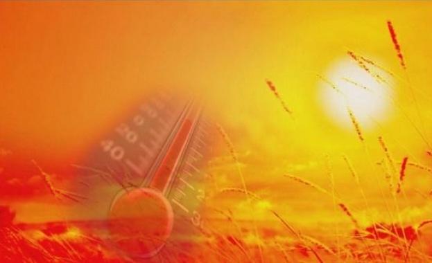 Опасни жеги: Температури до 40 градуса