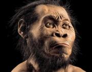 Родствениците на човека са могли да говорят още преди 3 милиона години?