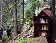 Родопите вече имат горска библиотека