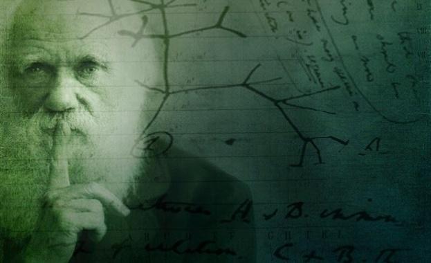Двуизмерното еволюционно дърво, което Чарлз Дарвин рисува в своя бележник