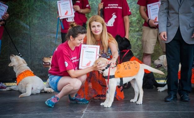 Рекорден брой служебни кучета за хора с увреждания - общо