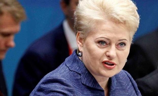 Президентът на Литва Даля Грибаускайте предлага киберсигурността да стане част
