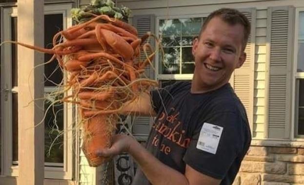 Американец отгледа 10-килограмов морков