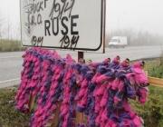 Розови противогази за по-чист въздух разкрасиха Русе