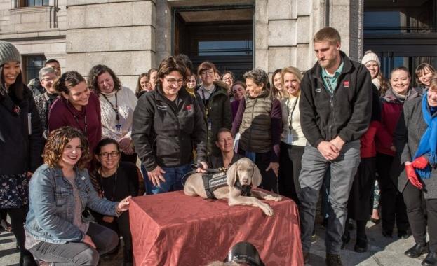 Куче ще охранява бостънски музей от вредители