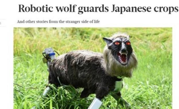 Роботи-вълци излизат в продажба в Япония, за да помагат на