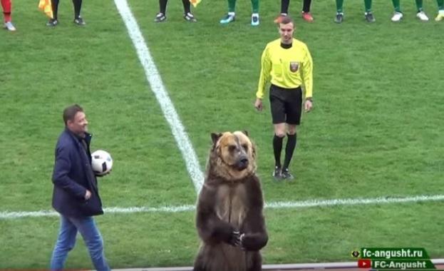 Мач в Русия бе открит от... мечка! (видео)