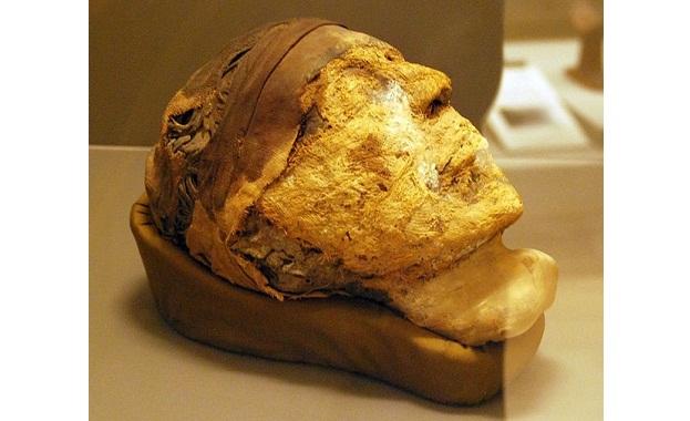 Криминолози от ФБР успешно извличат ДНК от зъба на египетска