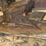 Русенската екоинспекция установи тревожно замърсяване на Дунав