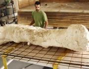 В Китай намериха останки от динозаври на 120 млн. години