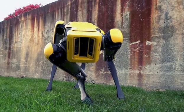 Черен робот-куче, наречен SpotMini, направи впечатляваща разходка по улиците на