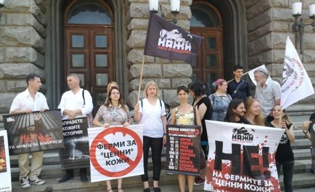 Активисти внесоха над 33 000 подписа в НС срещу отглеждането