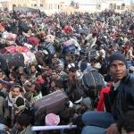 Петър Волгин: Мигрантите разцепват Евросъюза