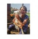 Държавата убива животновъдството и селата