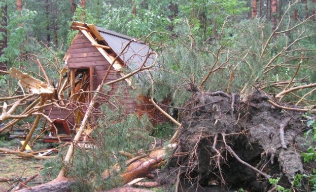 На 13 юли ураган удари планината Алтай, дървета бяха пречупени
