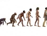 Учени опровергаха популярна хипотеза за произхода на човека