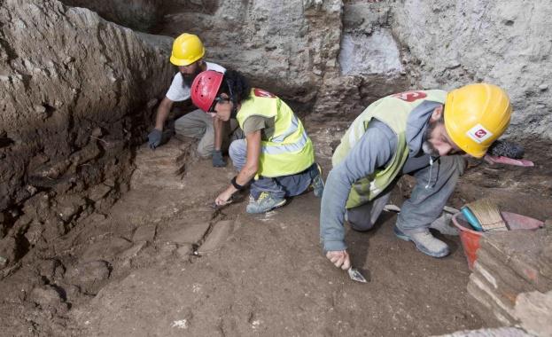 Учени се натъкнаха на останки от древен гигантски носорог от