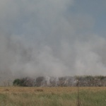 Димящото сметище край Бараково обгазява Кочериново и Благоевград