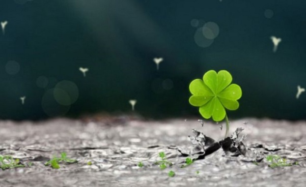 Снимка: Аз вярвам в късмета...