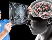 Учени: Мозъкът започва да работи с пълна сила след 60 години