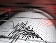 Силно земетресение разтърси Западна Турция