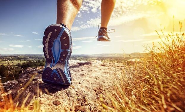 Наднормено тегло, болести и ограничено движение - това са част