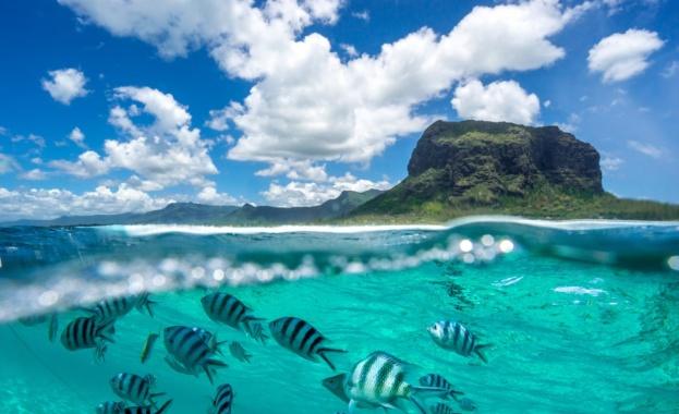 Отбелязваме Световния ден на океана