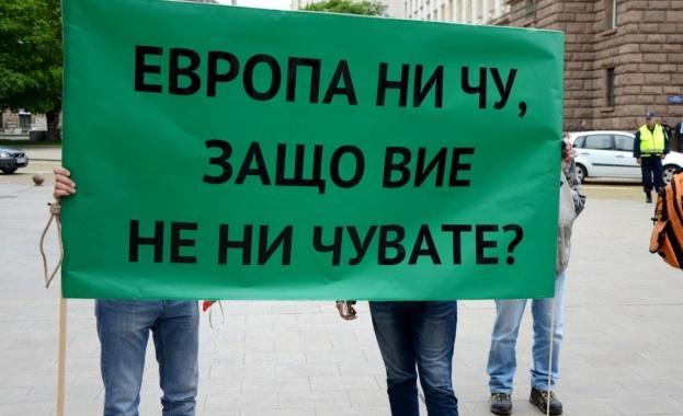 Малките ВЕИ-та поискаха оставката на Теменужка Петкова и шефа на КЕВР
