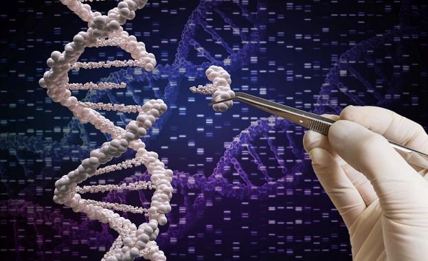 Учени извлякоха ДНК на трима души от дъвка на 10