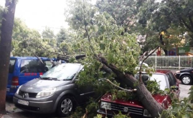 Спокойна е вече обстановката в Пловдив след проливния дъжд и