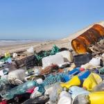 Учените създадоха бактерия, която поглъща пластмасата