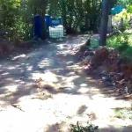 Природозащитници сигналиризат, че се прокарва път в защитена зона Силистар