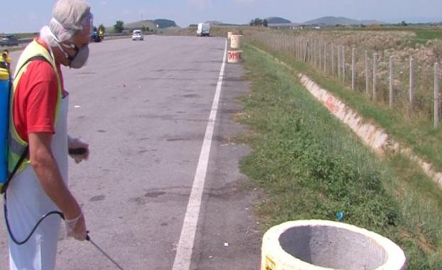 Дезинфектират пътни артерии и ТИР-паркинги в област Перник заради усложнената
